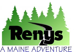 Renys Color Logo Large