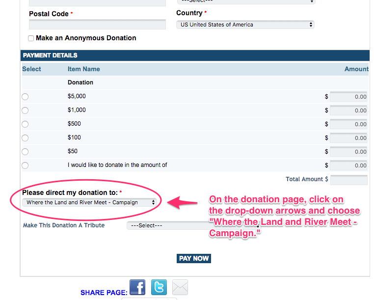 payment portal instructions