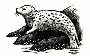SealPrint