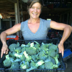 volunteer with a crate of beautiful broccoli