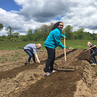 students raking in compost