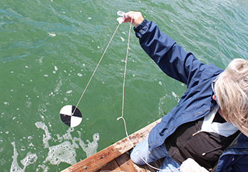 lowering a Secchi disk into the water