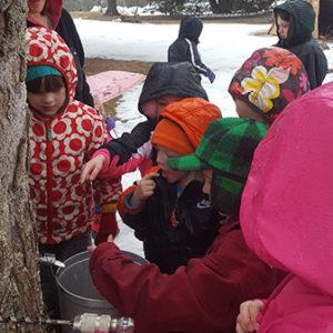 kids tasting sap