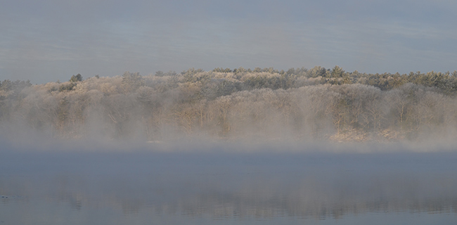 Sea smoke and frosty trees on the river