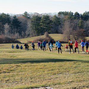 runners at Great Salt Bay Farm
