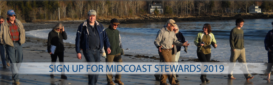 midcoast-stewards-2019