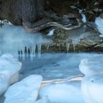 roots, rock, snow and icicles