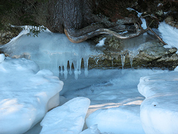 river ice, icicles, roots and rock