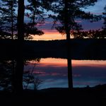 sunset on the river, seen through the pines