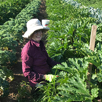 a volunteer helps with the harvest