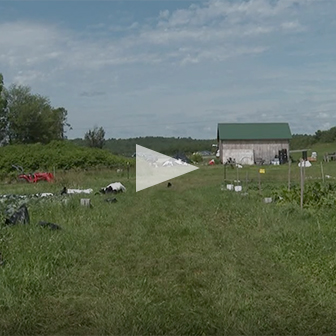 Twin Villages Foodbank Farm on Channel 6 News