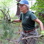 Trail Tamer volunteer clearing brush