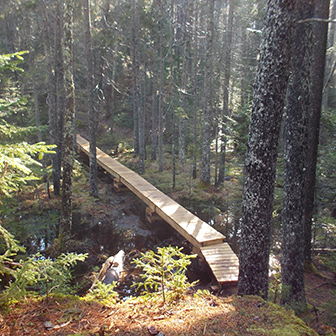 bridge at Seal Cove Shore