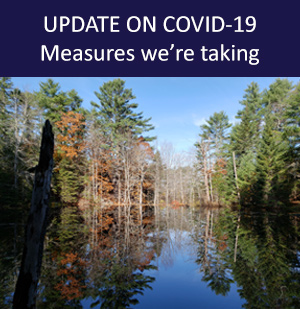 COVID-19 measures we're taking