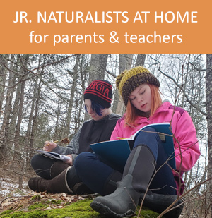 Jr. Naturalists at home resources