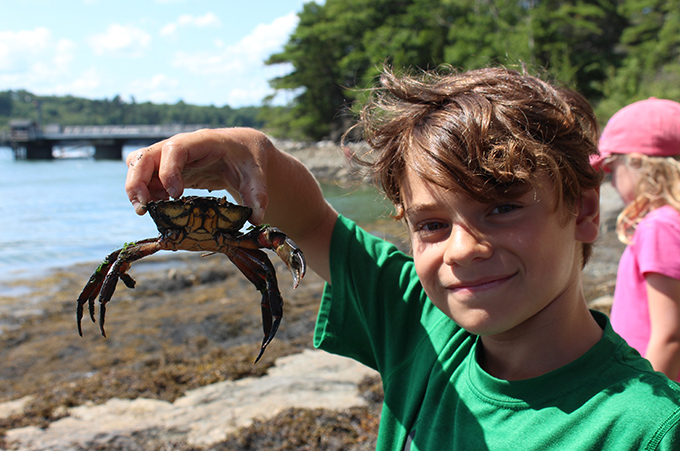 smiling boy holding a green crab