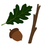 leaf, acorn and stick graphic