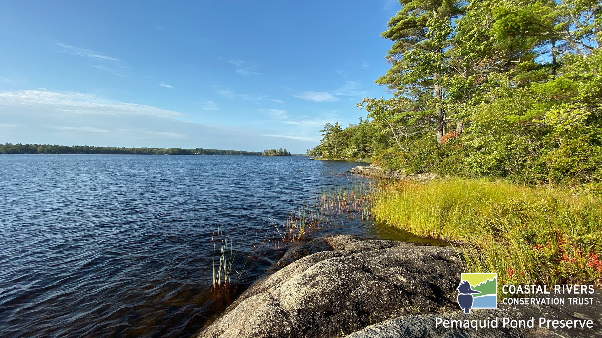 view from shore at Pemaquid Pond