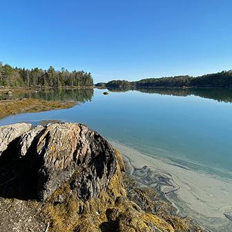 Coastal Rivers Zoom backgrounds