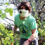 A young volunteer helps cut back invasive vines