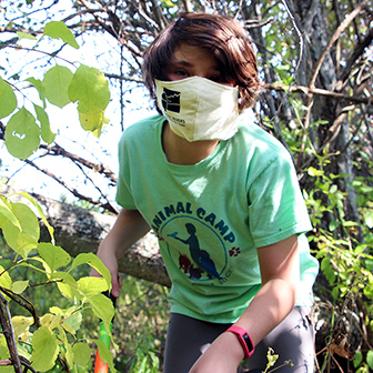 Volunteer to trim trails or cut back invasives