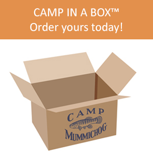 link to Camp in a Box