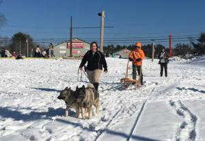 dogsledding demonstration