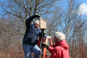 mounting a bird box on a post